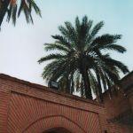 Jardin Lalla Hasna